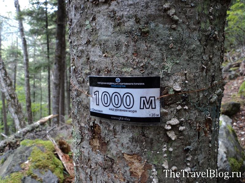 1000 метров