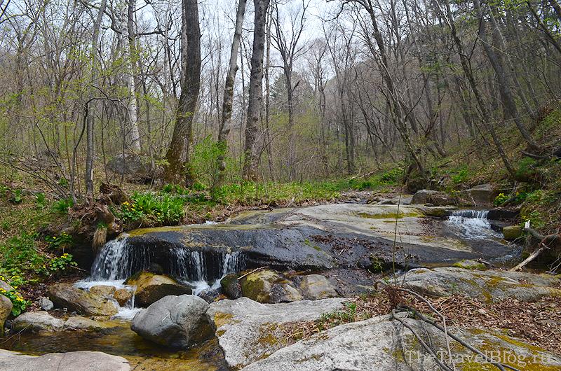 лес и река Водопадная