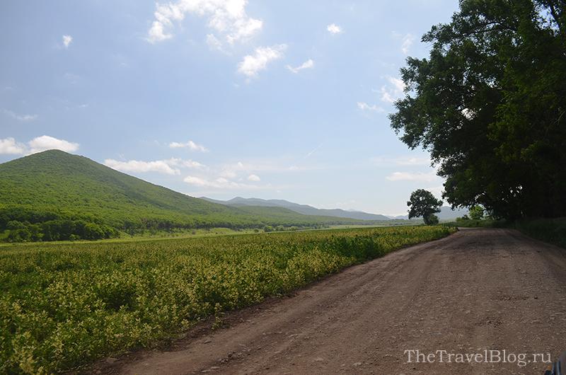 поле и дорога