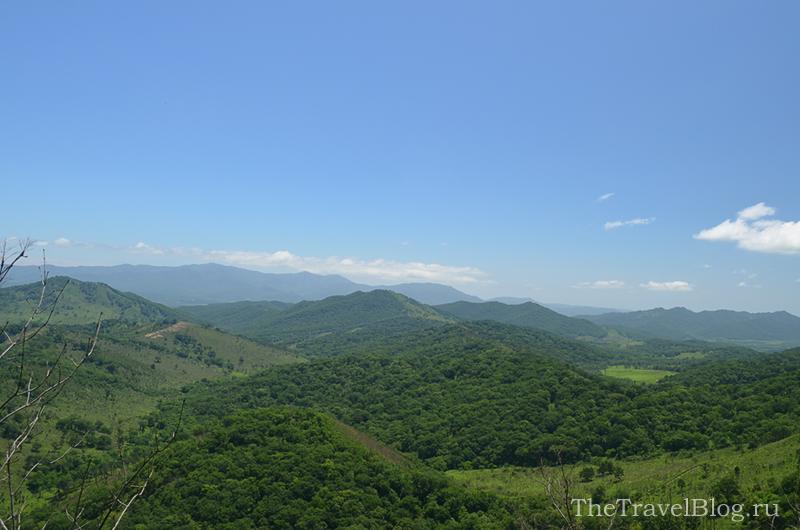 панорама на лес и сопки