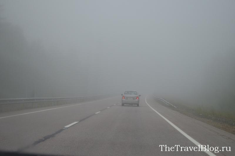 утренний густой туман
