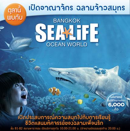 визитка океанариума
