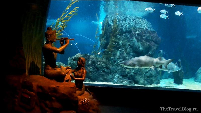 акула и скульптура