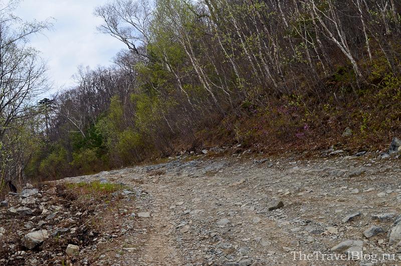 острые камни на дороге