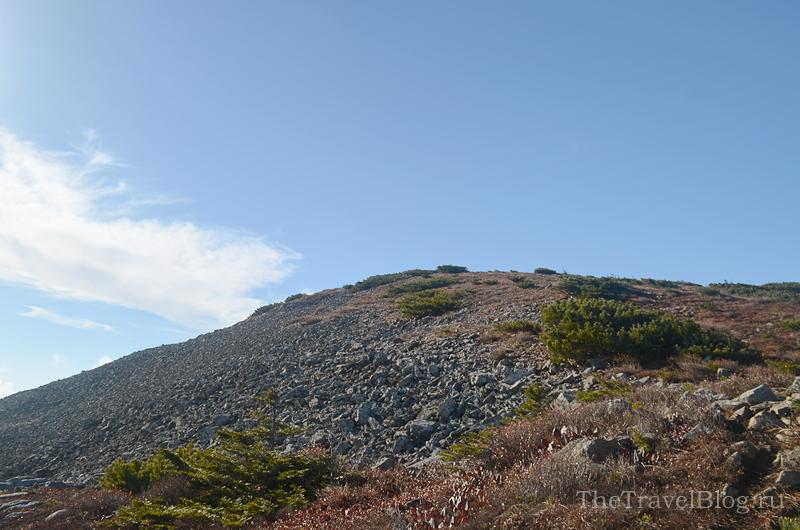 пологая вершина горы Лысая